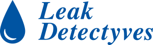 Leak Detectyves
